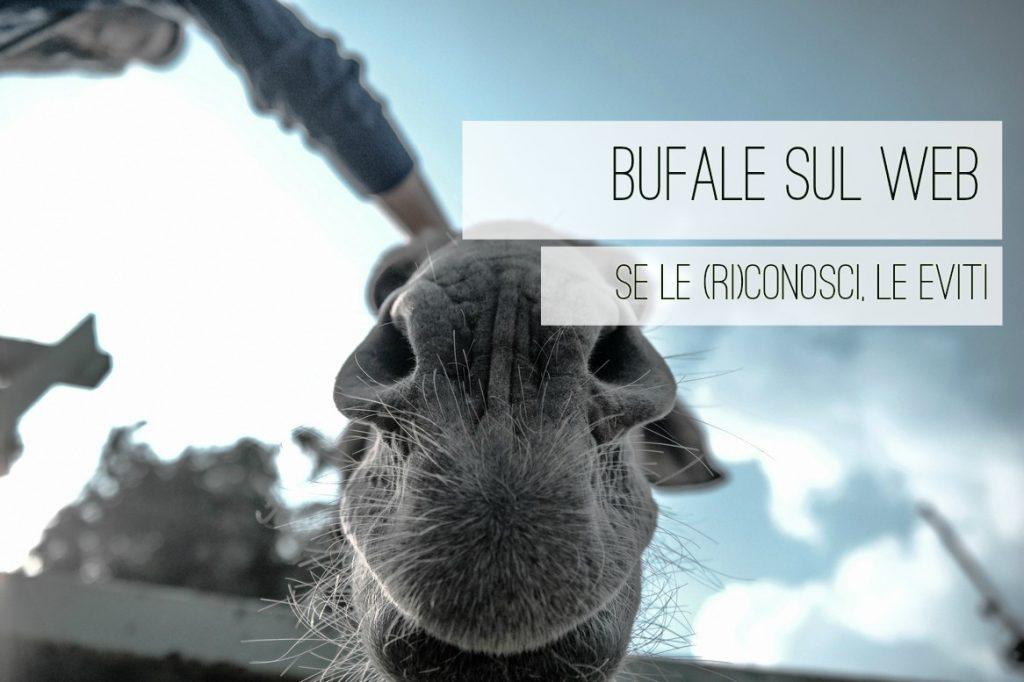bufaleweb-danielesignoriello-copywriter